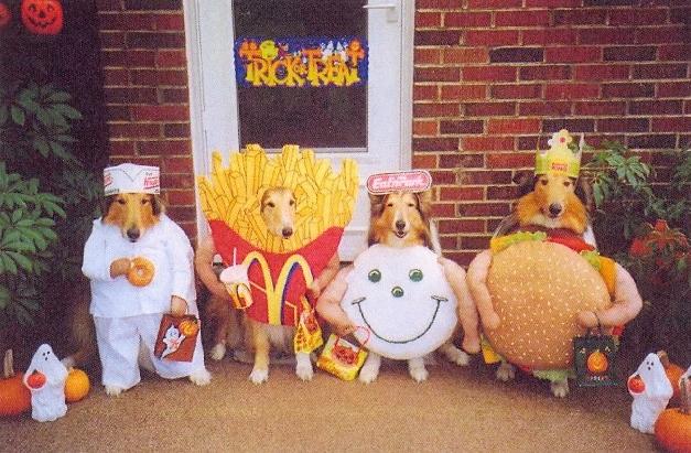 halloween-dogs1.jpg